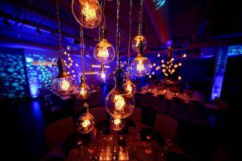 edison bulbs - 1